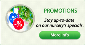 Stay up-to-date on our nursery's specials.
